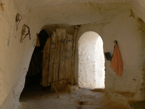 tunez(tarjeta1) 489