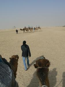 tunez(tarjeta1) 602