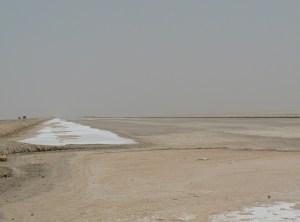 tunez(tarjeta1) 693